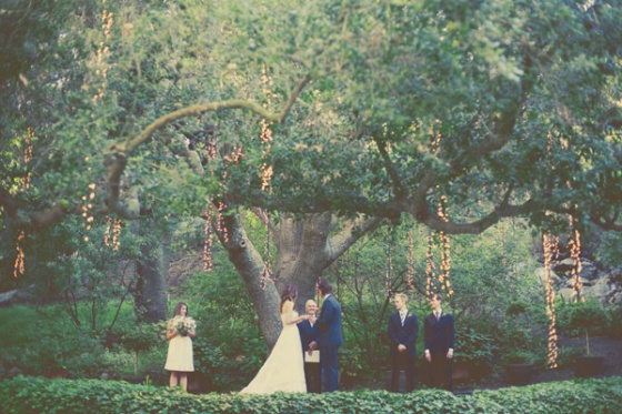 Ceremony Under A Tree